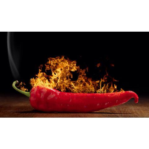 """Motiv """"Brennende Chilischote"""""""
