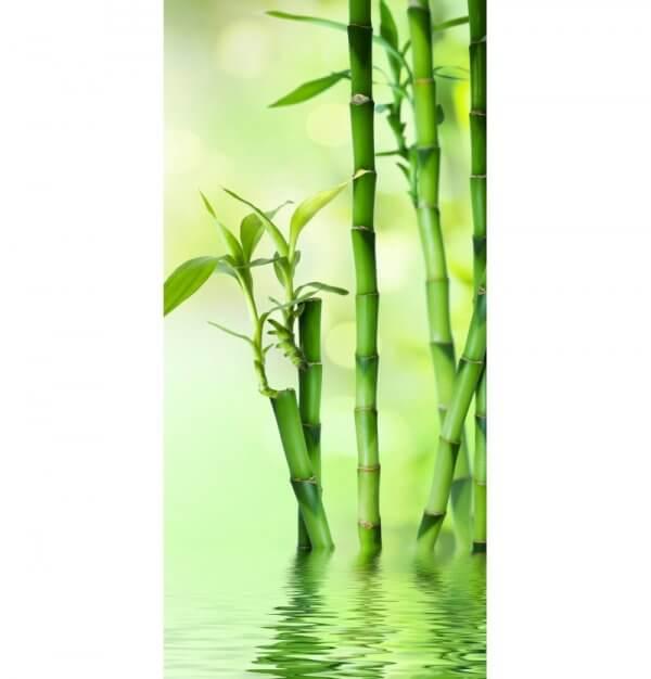 Duschrückwand Wasserbambus Basic von Schön & Wieder