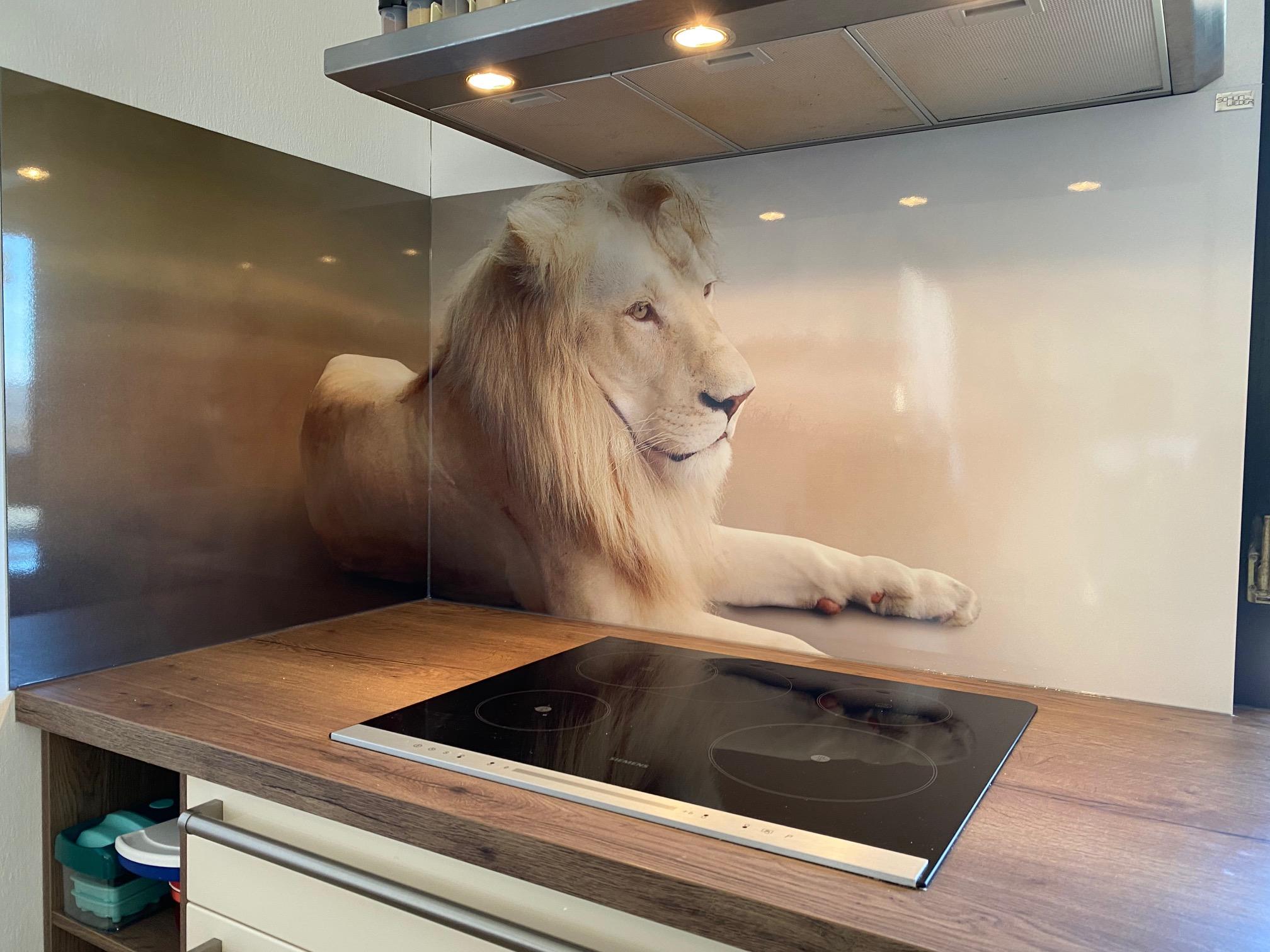 Küchenrückwand Motiv Löwe