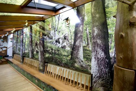 Rückwände mit Waldmotiven in der Ausstellung Wildnis(t)räume in Vogelsang